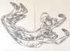 2x 110cm(h) x 75cm(w), Acrylic on paper.